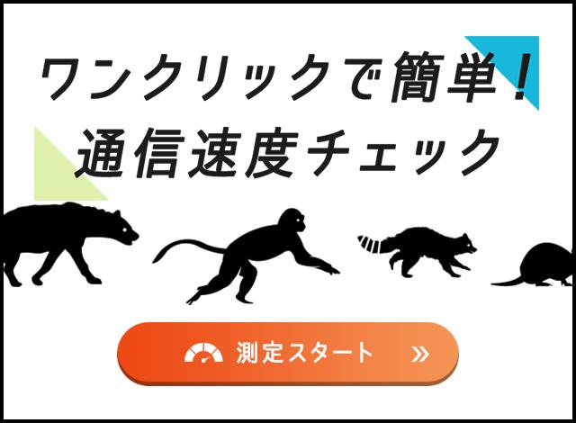あなたのインターネットの速度を、動物たちが格付けします!