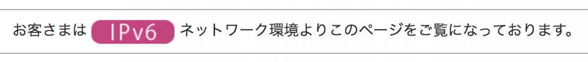 NURO光 IPv6 確認