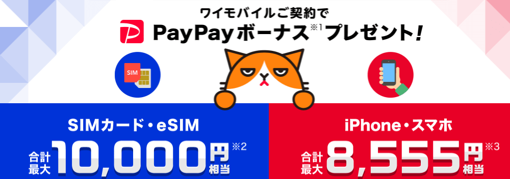ワイモバイルヤフー店 PayPayボーナス